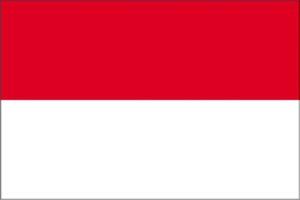 перевод документов на индонезийский, с индонезийского
