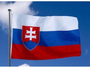 перевод документов на словацкий, с словацкого, недорого, цены, заказать