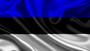 перевод документов на эстонский, с эстонского, киев, цена, заказать