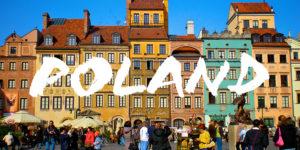 перевод документов на польский и с польского